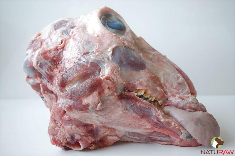 Free-Range Lamb Head | Naturaw Canine Food